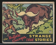 1936 N144 Wolverine Gum Strange True Stories #2 The Buffalo Charges